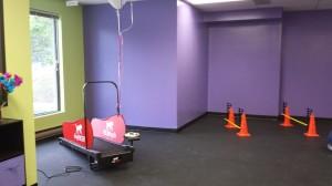 Dog Dayz Treadmill