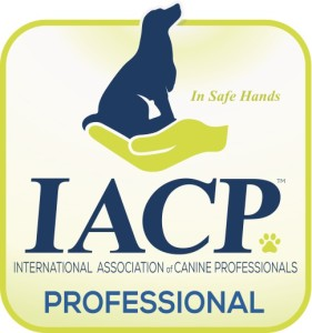 iacpm-professional-logo-cmyk